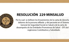 Resolución No. 229 de 2020