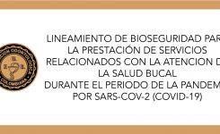 LINEAMIENTOS DE ATENCIÓN DE LA SALUD BUCAL