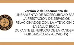 lineamientos de atencion salud bucal version 2